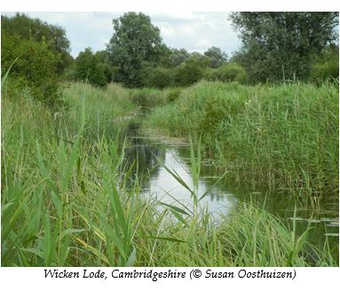 wicken-lode